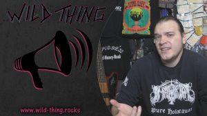 Was soll das alles mit Five Finger Death Punch?